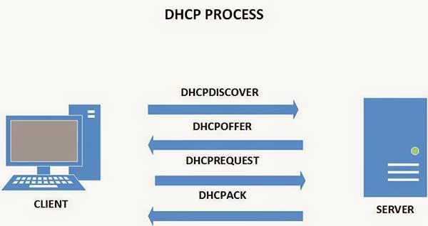 درخواست dhcp
